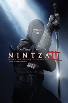 Ninja: Shadow of a Tear - 2014